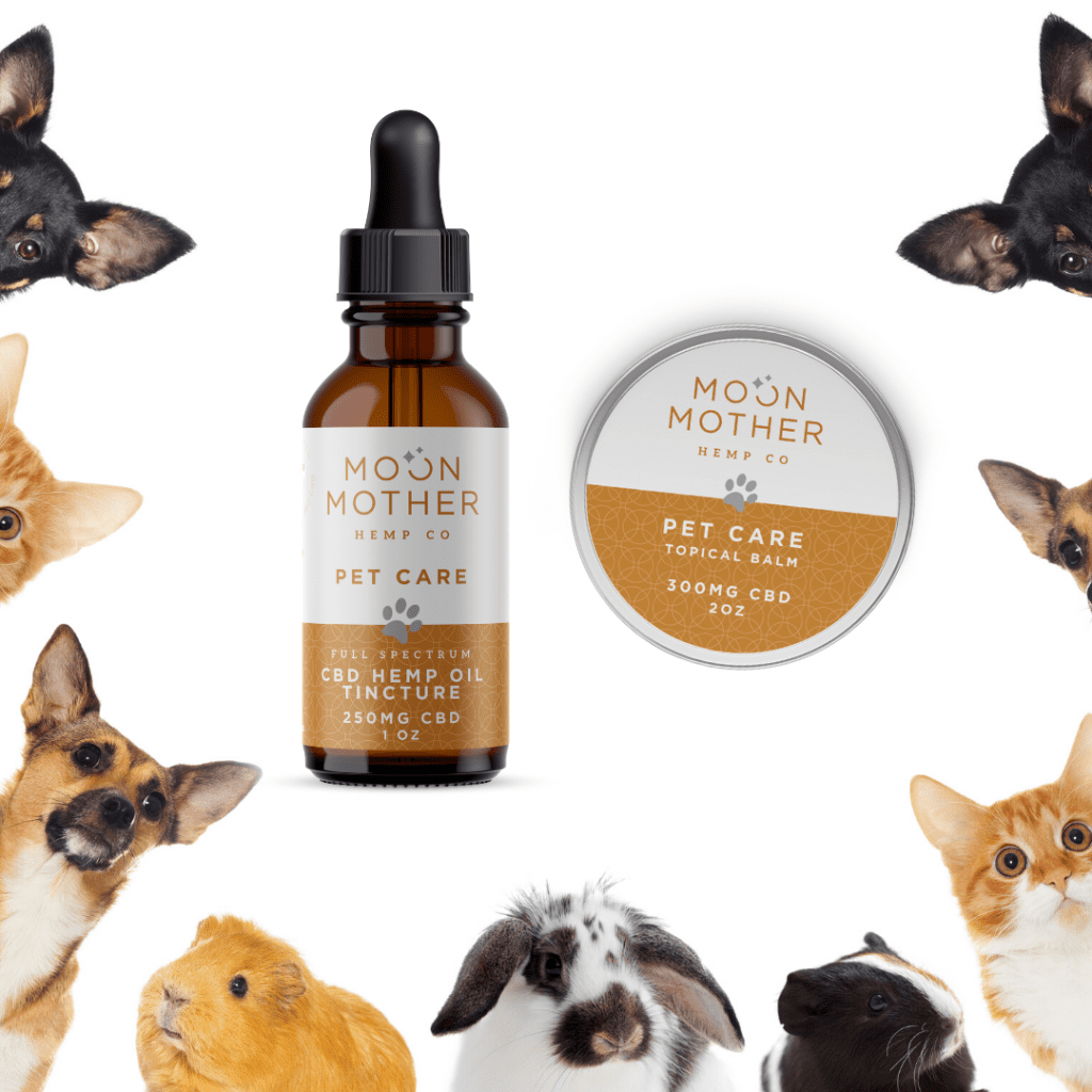 Pet Care CBD Oil and Balm surrounded by dogs, guinea pigs, cats and a rabbit
