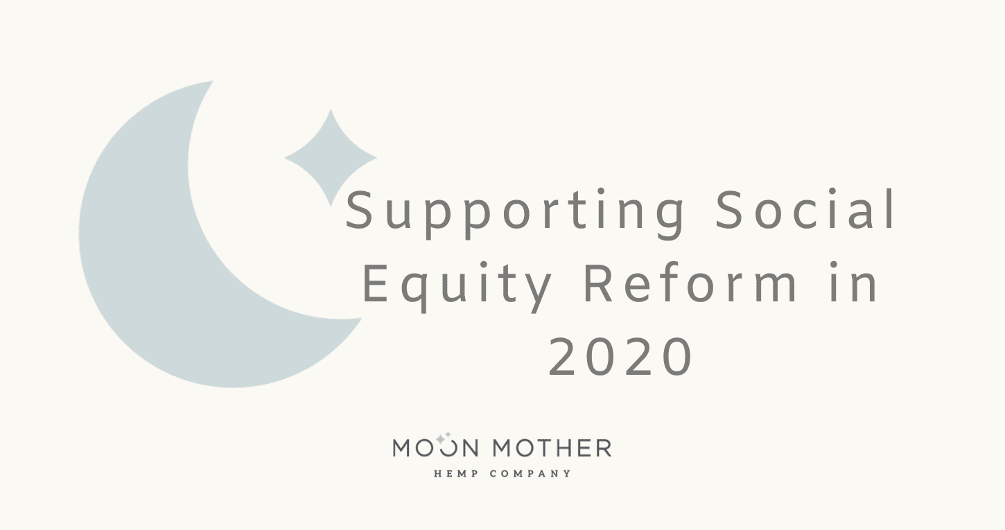 Supporting Social Equity Reform in 2020